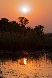 Couché de soleil dans l'Okavango