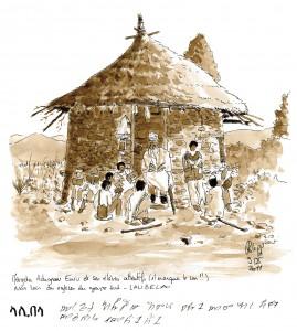 Bichon_Ethiopie-(1)